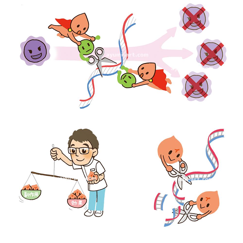 医療イラスト 細胞 DNA イラストレーター 多田あゆ実
